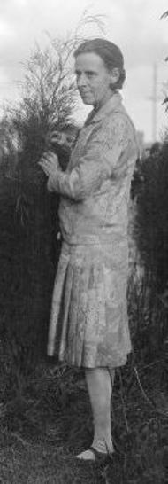 Marion Mahony Griffin